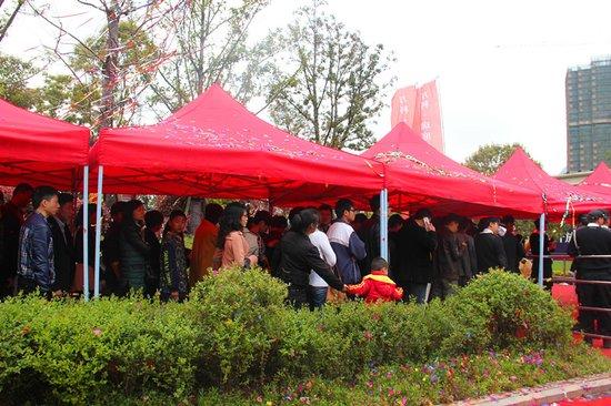 红动温州 万科珑庭展厅正式开放