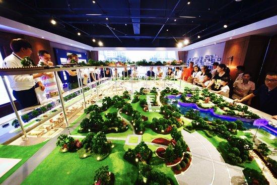 置信 杨府山立体公园展厅盛大开放,引爆全温州