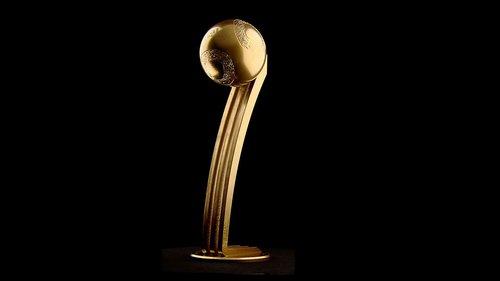 新金球奖奖杯样式确定 阿迪公布新杯照片(图)