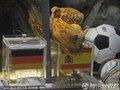 世界杯10大花絮(9)