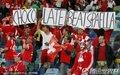 图文:西班牙0-1瑞士 球迷欢呼胜利