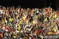 图文:塞尔维亚0-1加纳 球迷呐喊助威