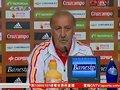 视频:博斯克称保持风格是西班牙获胜关键