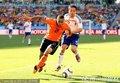 范德维尔保护足球