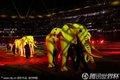 闭幕式上的非洲大象