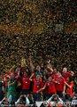 图文:荷兰0-1西班牙 西班牙队获得冠军(10)