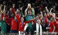 西班牙队获得冠军(52)