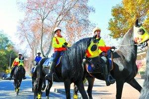 南非骑警巡逻保赛场平安 4.4万警察参与安保