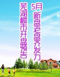 芜湖5月开盘预告