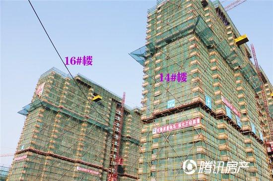 伟星公园大道北区13#、14#、15#、16#高层均已封顶