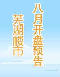 芜湖8月开盘预告