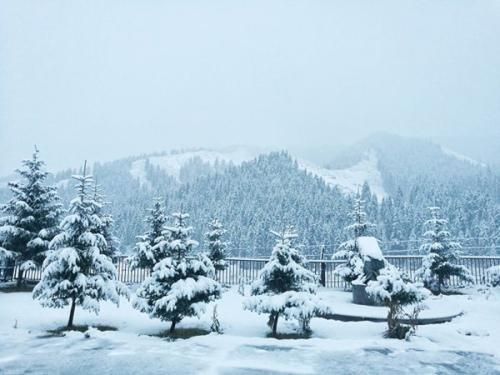 本轮降雪量排名 乌鲁木齐排老大
