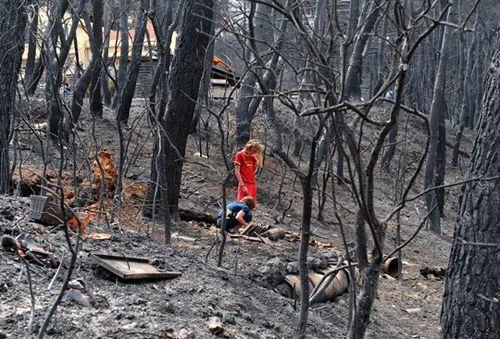 燃烧四天的希腊森林大火24号得到了有效控制.图片