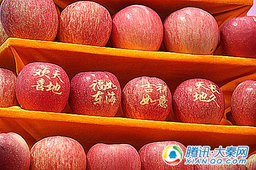 今年的苹果纹身流行用祝福语