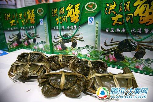 诱人的大闸蟹在农高会上吊足参观者胃口