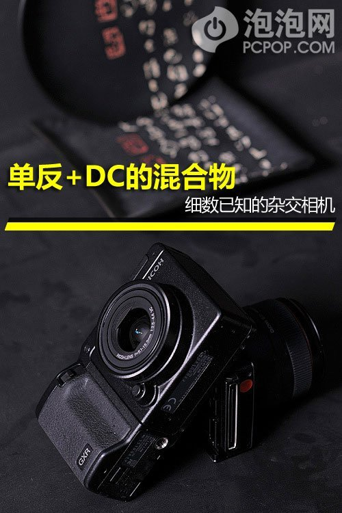 单反+DC的混合物 细数已知的杂交品牌相机
