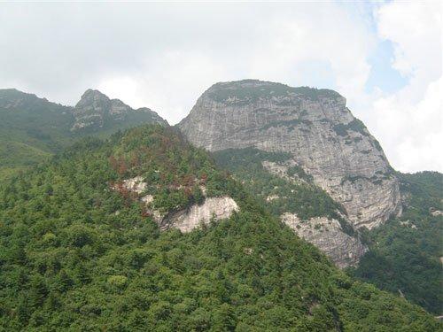 大熊猫,金丝猴,羚牛,大鲵珍稀动物等各类自然保护区,散布在秦岭山脉