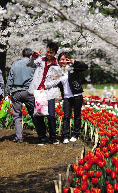 4月2日:西安清明自驾全攻略