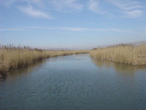 看生态美景何必跑远 陕西湿地公园就很美