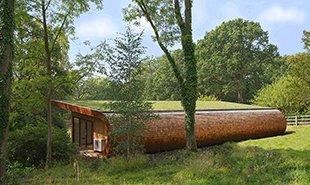 英兄弟打造隐身树屋