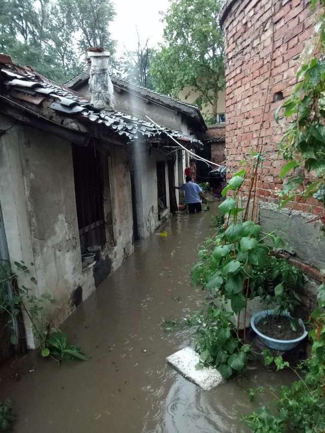 印台分局焦坪全体民警逆水而行 转移受灾群众70余人图片
