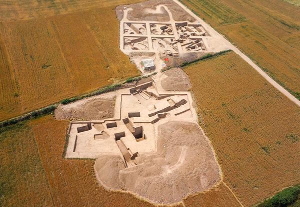 陕西渭南发现5800多年前北方地区水稻栽培证据