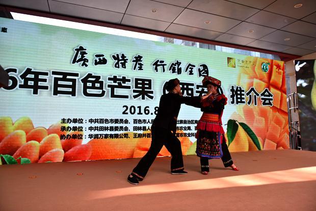 全国—2016年百色芒果(西安)推介活动启动仪式,百色芒果品种展览展示图片