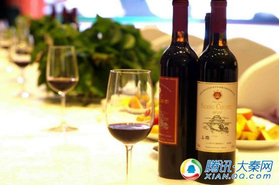 大秦榆林会客厅--张宗雁:做红酒消费者是我最大的竞争对手