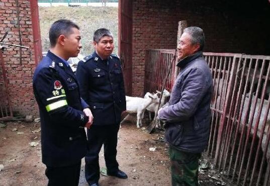 """羊群""""失踪""""急坏主人 渭南民警帮忙如数找回"""