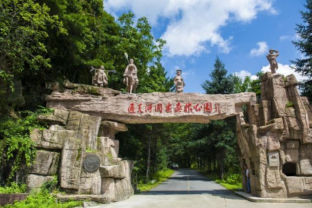 通天河国家森林公园:给你最清凉的避暑天堂