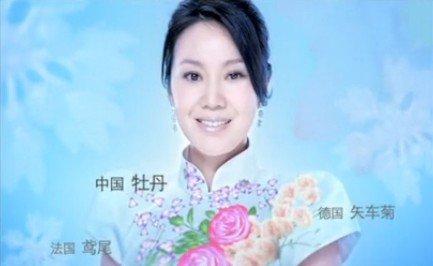 2011世园会宣传视频