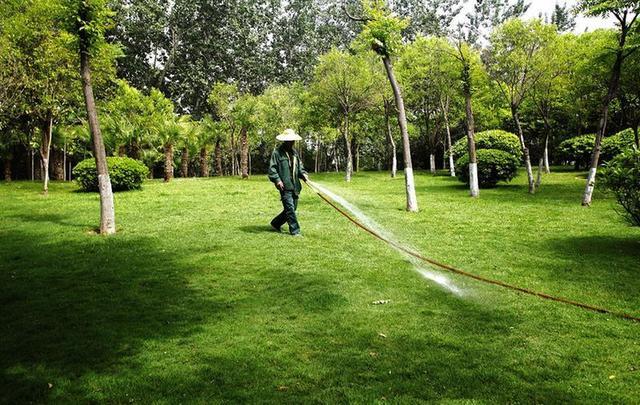 昨日中午,常熟烈日当空,工人v工人城市里,一位园林草坪正在给公园浇水.西安花园别墅新加坡图片