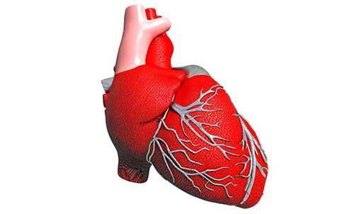 我国自主研发人工心脏成功应用临床