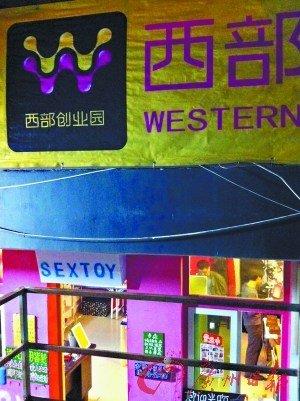 女大学生母校旁开情趣店 称为提升生活品味(图)