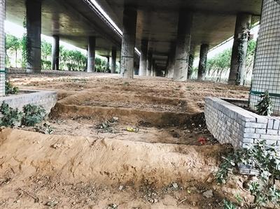 绕城高速一高架桥下地面黄土裸露 垃圾随处可见