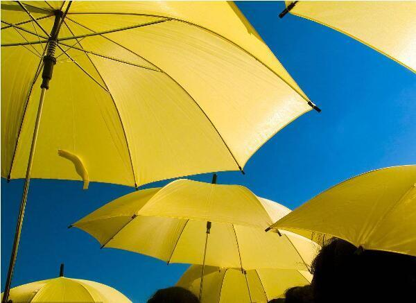 日本人创业做共同雨伞 投放2300把仅剩200把