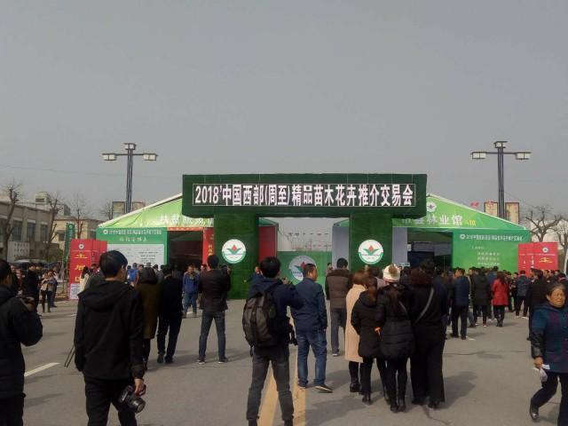 2018中国西部(周至)精品苗木花卉推介交易会盛大开幕