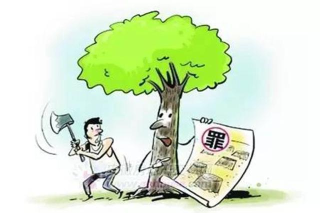 榆阳一村民未经许可砍伐自己购买的林木被判刑