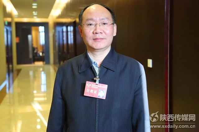 陕西省政协委员、西安美术学院党委书记王家春。