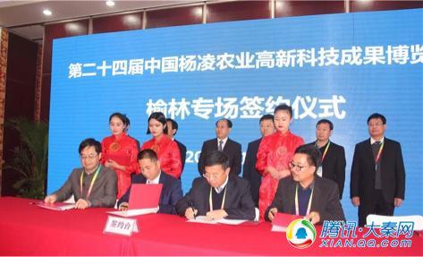 榆阳区在第24届农高会上3项目签约16.6亿元
