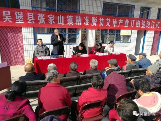 吴堡张家山镇与药企签订200亩艾草种植协议图片