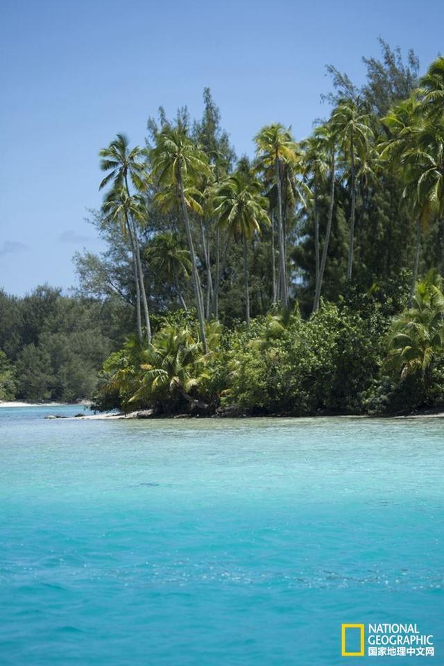 """大溪地,这就是你终生都在寻找的那座""""爱情之岛""""!"""