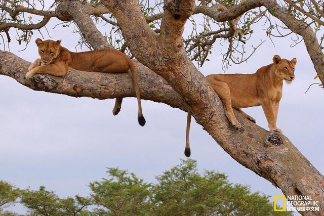 鲜为人知的七大非洲奇观