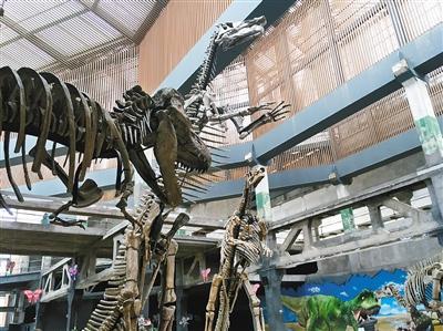 巨型恐龙化石展登陆西安