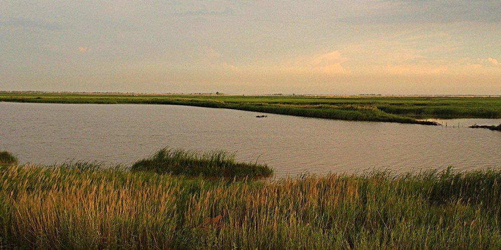 游黄河湿地 听美丽神话传说