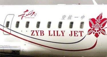 赵本山的私人飞机,除了自己使用,也出租经营
