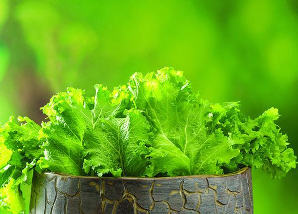 蔬菜上残留的农药会影响健康 如何降低残留量