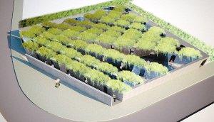 """镜子走廊绿植墙 世园会""""绿色迷宫""""造神秘地带"""