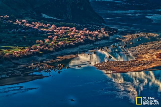 走一场西藏桃花运 西藏在春天也卖萌 万里桃花粉嘟嘟