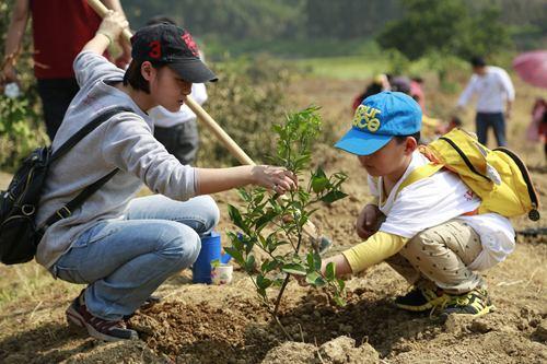 家庭亲子游更优惠 初春太平森林公园植树报名